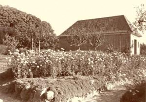 Kapelleca1952